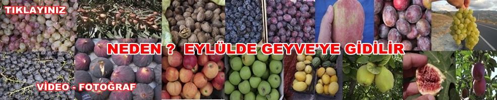 Geyve Eylul