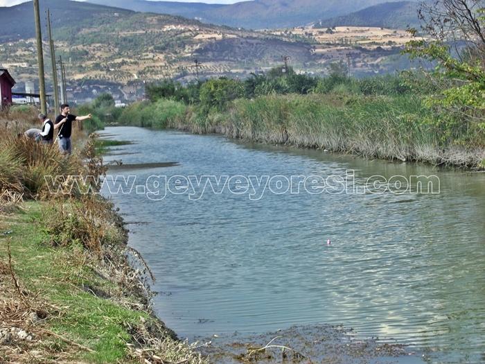Kanal Geyve Mesire 12