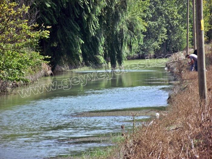 Kanal Geyve Mesire 3