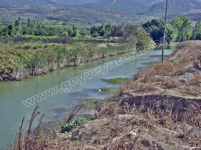 Kanal Geyve Mesire 4