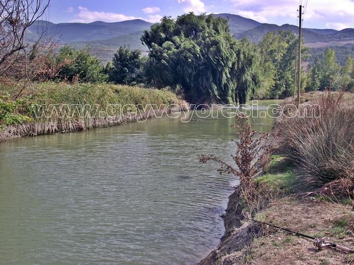 Kanal Geyve Mesire 6