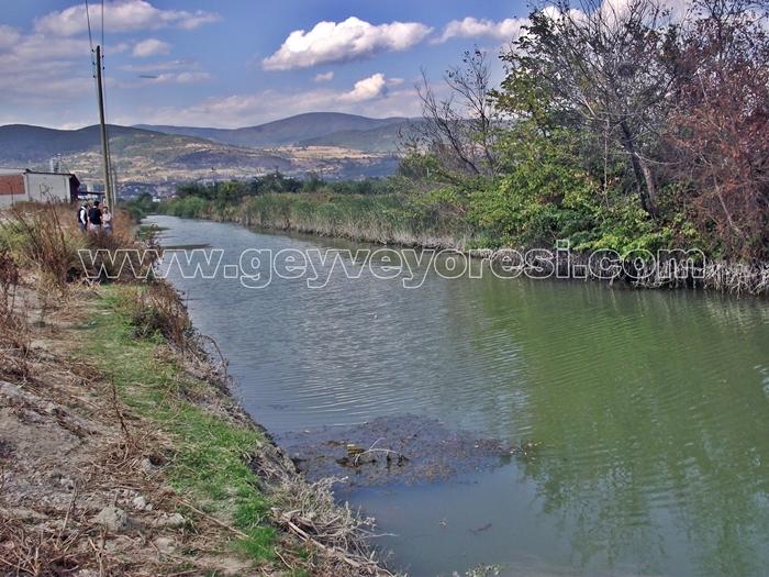 Kanal Geyve Mesire 9