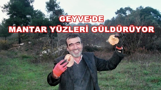 Geyve Mantar 005
