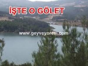 GOLET1