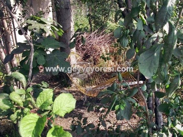 Geyve Hamak