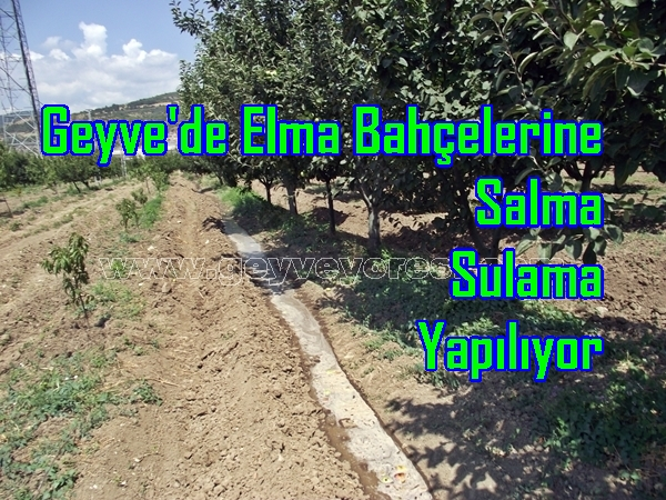 Salma-Sulama-Geyve-22