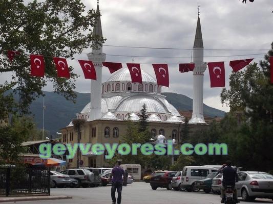 Geyve 2013  Bayrak4
