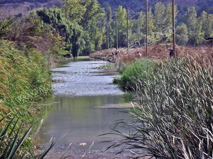 Kanal Geyve Mesire 1