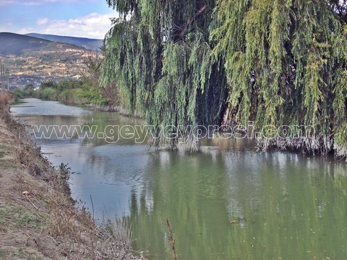 Kanal Geyve Mesire 13