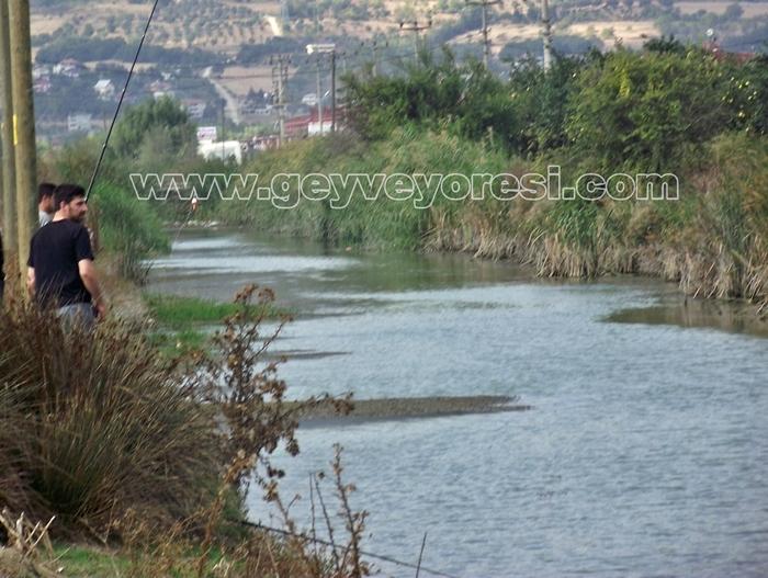 Kanal Geyve Mesire 25