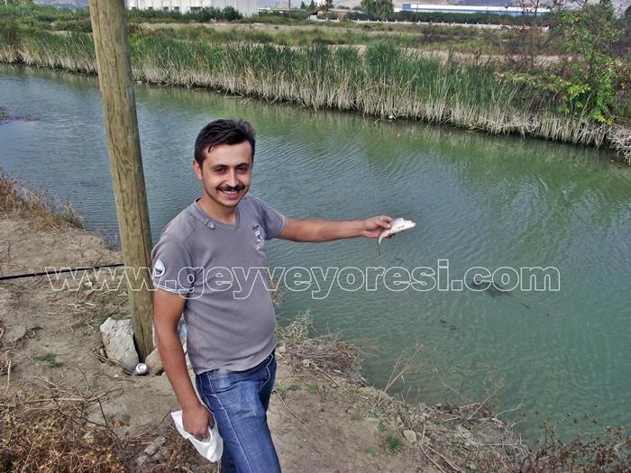Kanal Geyve Mesire 27