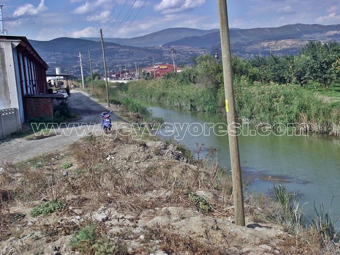 Kanal Geyve Mesire 5