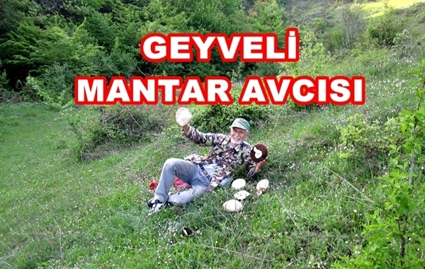 Mantar Geyve 032